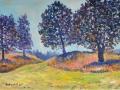 Four Oaks, near Hawkshead Oil on canvas by Kevin Weaver 29 x 43 cm £160 unframed