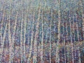 NOW SOLD Birch Trees II Ennerdale