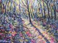 Lonning Light by Loweswater 30 x 43 cm £250 framed