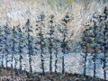 NOW SOLD Scots Pine Sentinels Thirlmere