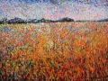 Poppy Field Norfolk. 50 x 40 cm £250 PAINTINGS UNFRAMED UNLESS STATED