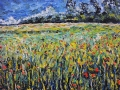 NOW SOLD Poppy Fields III, Norfolk. 60 x 50 cm, Oil on canvas
