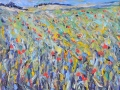 NOW SOLD Poppy fields IV, Norfolk. 40 x 30 cm, Oil on canvas £60 PAINTINGS UNFRAMED UNLESS STATED