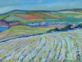 'St Bees Fields.' Oil on canvas by Kevin Weaver 80 X 30 cm £300